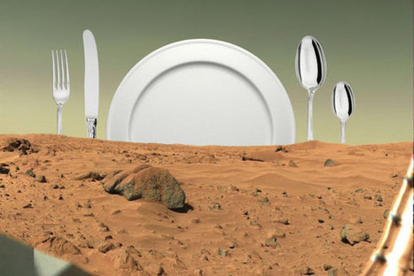 The Best Kind Of Supper Club Wonders What We'll Eat On Mars | Entomophagy: Edible Insects and the Future of Food | Scoop.it