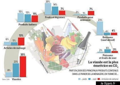 Non, la viande ne plombe pas le bilan carbone du panier de la ménagère ! | Actualité de l'Industrie Agroalimentaire | agro-media.fr | Scoop.it