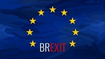 The green business reaction: Could Brexit 'erode' environmental policies? | Green economy | Scoop.it