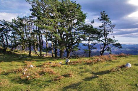 Un cromlech sur la crête Est du Mandale | Megalithes en photo | Scoop.it