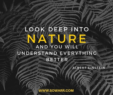 nature love quotes | Free Arabic Quotes | Scoop.it