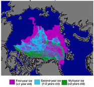 As the Arctic Ocean Melts, A Refuge Plan for the Polar Bear by : Yale Environment 360 | Environmental Science | Scoop.it