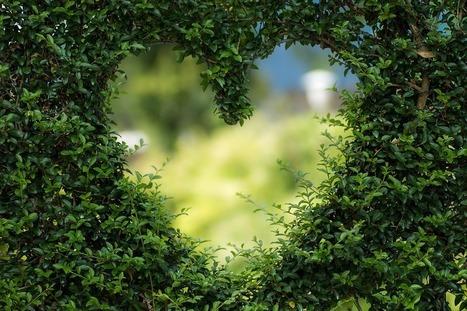 Don Miguel Ruiz : le pouvoir de l'amour | Développement personnel | Scoop.it