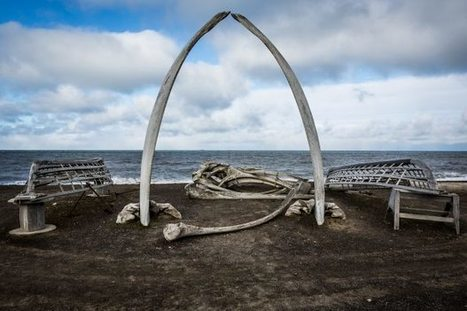 Barrow, a town divided over Shell's drilling | NWT News | Scoop.it