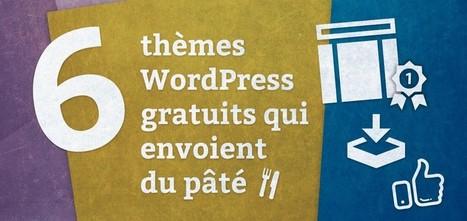 6 thèmes WordPress gratuits qui envoient du pâté - Blog du MMI | Resources & Tutorials | Scoop.it