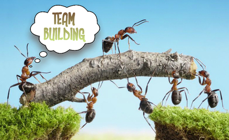 Importance Of Team Building: The Benefits Of Being On The Same ... | OHS Quest : Social, Physical & Mental Wellness in the Workplace Plus Quest 2 | Scoop.it
