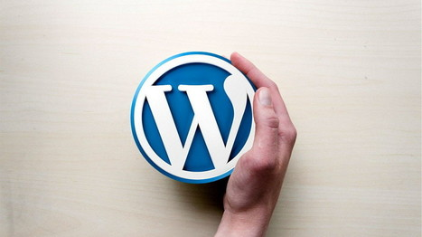 How to build a bright future career of WordPress training? | Tech Prevue | Scoop.it