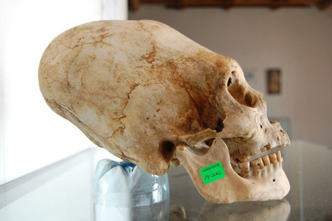 DNA Analysis of Paracas Elongated Skulls Released: Unknown To Any Human, Primate, or Animal | Music, Soul, Food, Medicine | Scoop.it