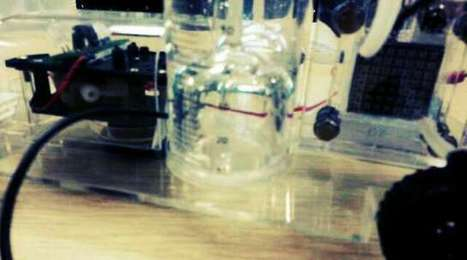 TJM's gif: building a hydrogen fuel cell car at the scienc... | FuelCells | Scoop.it