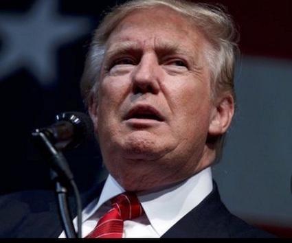 Trump Campaign hires bannon | Less Government More Fun | Scoop.it