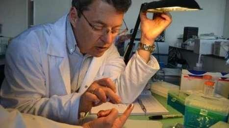 Marseille : la puce qui fait parler le cerveau | Micro-Nano Electronic for Neuroscience | Scoop.it