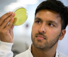 BBSRC Mention: New research targets main poultry diseases | BIOSCIENCE NEWS | Scoop.it