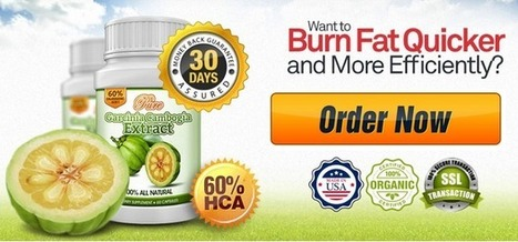 pure garcinia cambogia reviews | scoop | Scoop.it