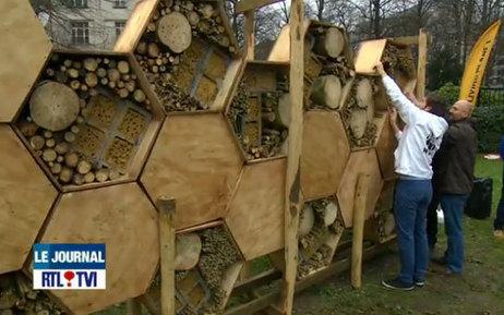 Voici le plus grand Hôtel à Insectes en Europe (vidéo) | Développement durable pour les entreprises et les collectivités | Scoop.it