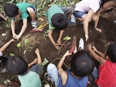 Earth Day: Lesson Plans, Reading Lists, and Classroom Ideas | New learning | Scoop.it