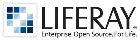 Liferay renforce sa présence sur le marché français | Collaboratif-Info | RCE Réseaux Collaboratifs d'Entreprise | Scoop.it