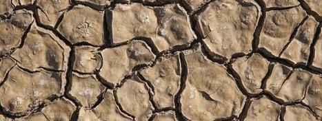 La humanidad consume el doble de lo que produce la Tierra   Ciència al CFA Palau de Mar   Scoop.it