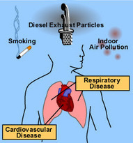 Effects of Air Pollutants - Health Effects | Air Pollution Control Orientation Course | Air & Radiation | US EPA | Pollution | Scoop.it