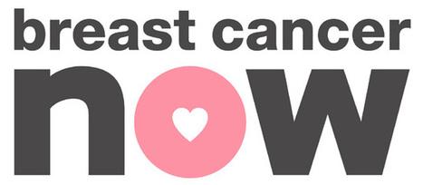 Rosa Bandet-produkter till stöd för cancerforskningen! | Tillbehör | Scoop.it