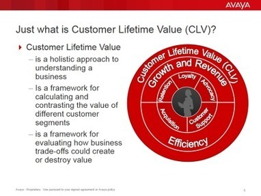 How to Get Smart about Customer Lifetime Value | Maximizing Business Value | Scoop.it