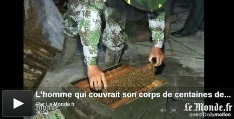 L'homme qui couvrait son corps de centaines de milliers d'abeilles | EntomoNews | Scoop.it