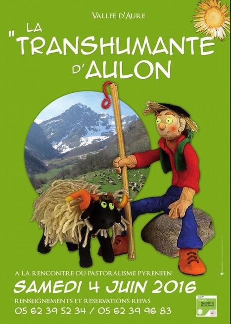 Transhumante d'Aulon le 4 juin | Vallée d'Aure - Pyrénées | Scoop.it