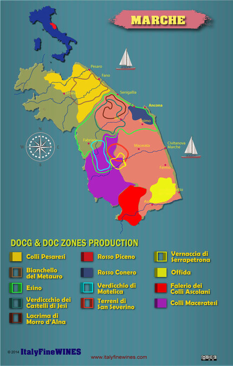 Marche Wine Region in infographic | Wines and People | Scoop.it