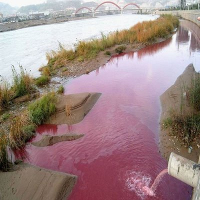 Major Retailers Contribute To Severe Water Pollution In China: Report | Water Stewardship | Scoop.it