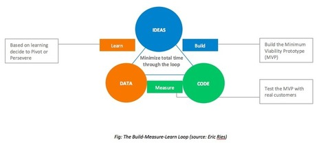 Bringing the Lean Startup Movement into Your Business | App Economy | Scoop.it