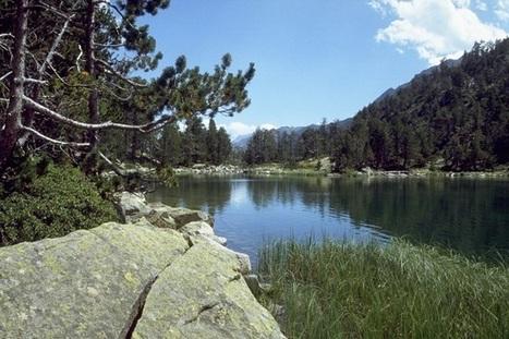 Mise en place de la Commission départementale de la préservation des espaces naturels, agricoles et forestiers des Hautes-Pyrénées | Vallée d'Aure - Pyrénées | Scoop.it