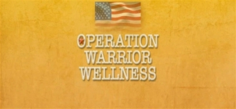 U.S. Marines Overcome PTSD with Transcendental Meditation® | Integrative Medicine | Scoop.it