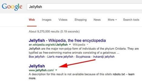 Google Indexing Bing's Jellyfish   Digital-News on Scoop.it today   Scoop.it
