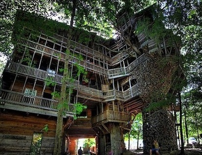 Jul21: The largest house built in a tree   Egyptday1   Scoop.it