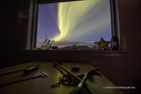 Aurore boréale aux #Lofoten #Norvège 30/08/2016... salon avec vue | Arctique et Antarctique | Scoop.it