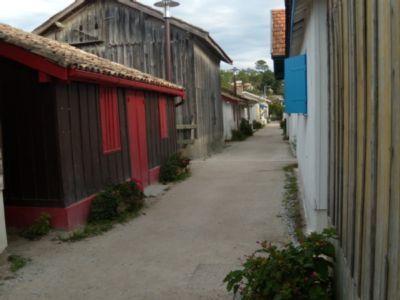 RANDONNEE AU BASSIN D'ARCACHON | Le Bassin d'Arcachon | Scoop.it