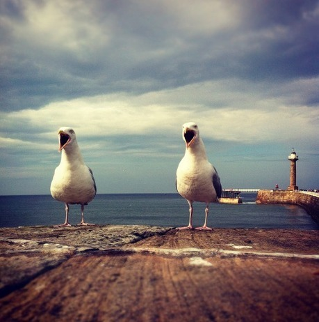 The World's 'Best' Mobile Photography Travel Photo – Winner Announced | Blogs | Scoop.it