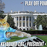 El Keyboard Cat quiere ser presidente | VIM | Scoop.it
