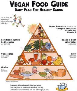 Sempre più vegani a tavola: cinque pro e contro sulla dieta che divide | Italica | Scoop.it