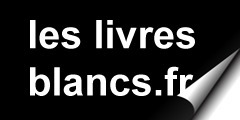 Vers l'entreprise collaborative : un projet qui a du sens - Livre Blanc - | Web marketing Webdesign 2.0 portail | Scoop.it