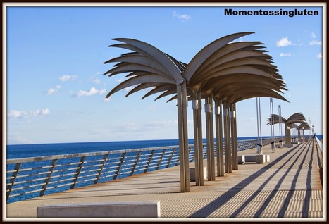 momentossingluten: Alicante sin gluten (y sin lactosa) I | Gluten free! | Scoop.it