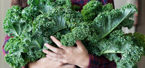 17 Things I Wish Everyone Knew About Kale | WELLNESS | Scoop.it