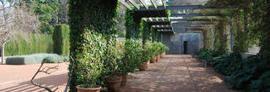 Las Hespérides, un jardín de colección | Referentes clásicos | Scoop.it