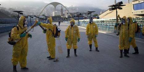 Zika: une centaine d'experts pour le report ou le déplacement des Jeux de Rio | Planete DDurable | Scoop.it