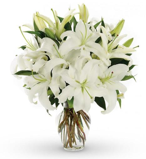 Online Flower Delivery in Bangalore | FlowerAura - Online Flower Delivery | Scoop.it