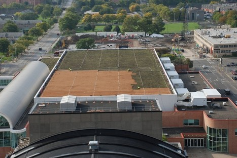 When will the OnCenter's green roof be green? | Save The Rain | Vertical Farm - Food Factory | Scoop.it