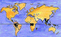 Rainforests | Rainforests - Global environments | Scoop.it