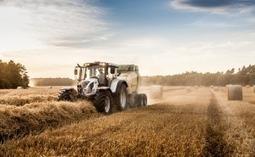 Das Wahlprogramm der FDP zur Landwirtschaft   Fundkiste   Scoop.it