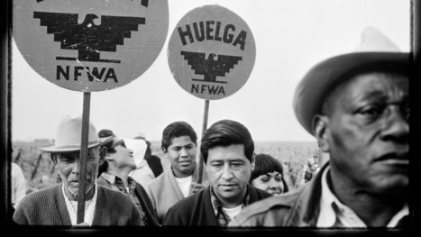 'The Crusades of Cesar Chavez,' by Miriam Pawel | The New York Times | Kiosque du monde : Amériques | Scoop.it