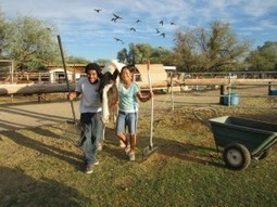 Kids, animals on a community-service track - Arizona Daily Star | Animals R Us | Scoop.it