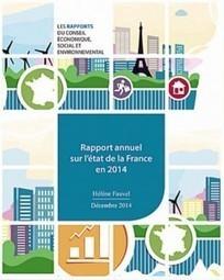 # TRANS-EUROPA MEDIAS / RAPPORT ANNUEL SUR L'ÉTAT DE LA FRANCE EN 2014 | TRANS-EUROPA MEDIAS | Trans-Europa Medias | Scoop.it